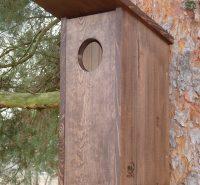 Hnízdní budka pro holuba doupňáka