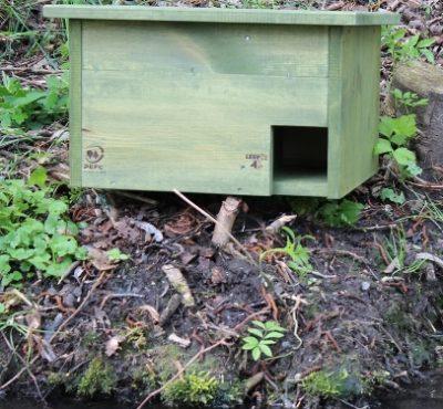 Hnízdní budka pro kachnu čírku