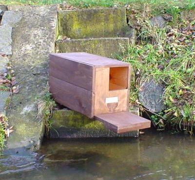 Hnízdní budka pro kachnu divokou