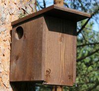 Domeček pro veverky