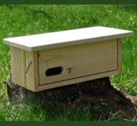 Hnízdní budka pro rorýse obecného – podlouhlá, typ 3